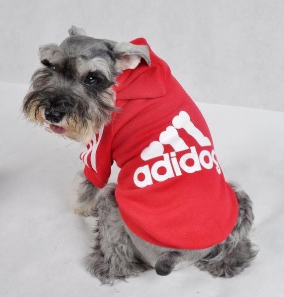 hundegenser adidog genser til hund hettegenser i love