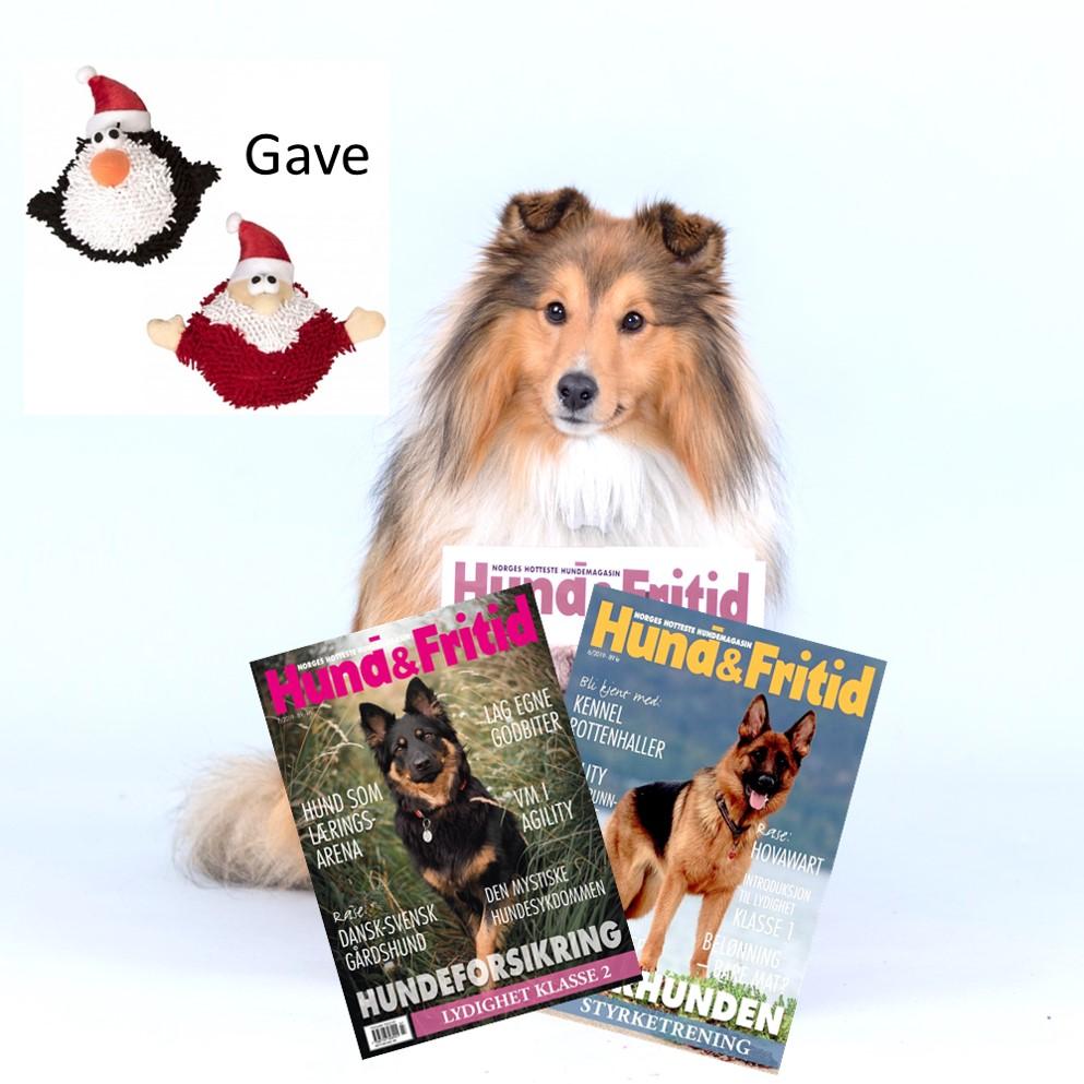 Bilde av Hund&fritid Abonnement + Halloweenleke
